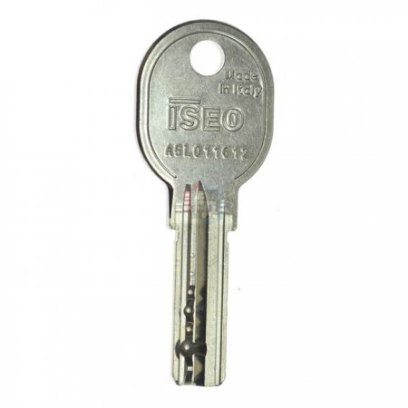Дубликат ключа Iseo R6